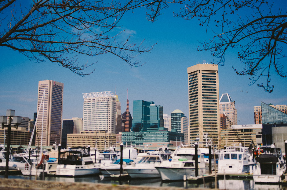 Image of Baltimore skyline