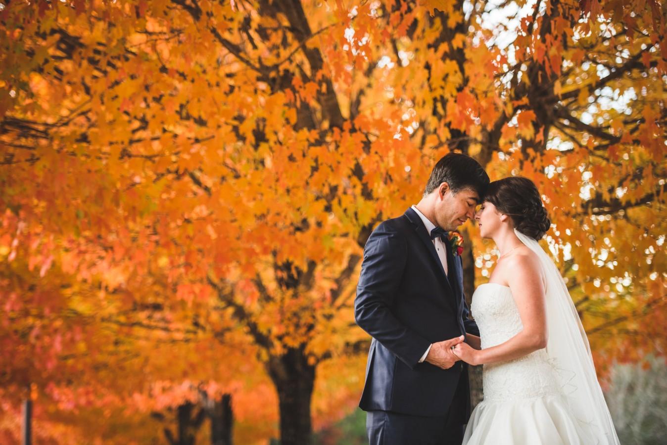 fete-photography-weddings-024