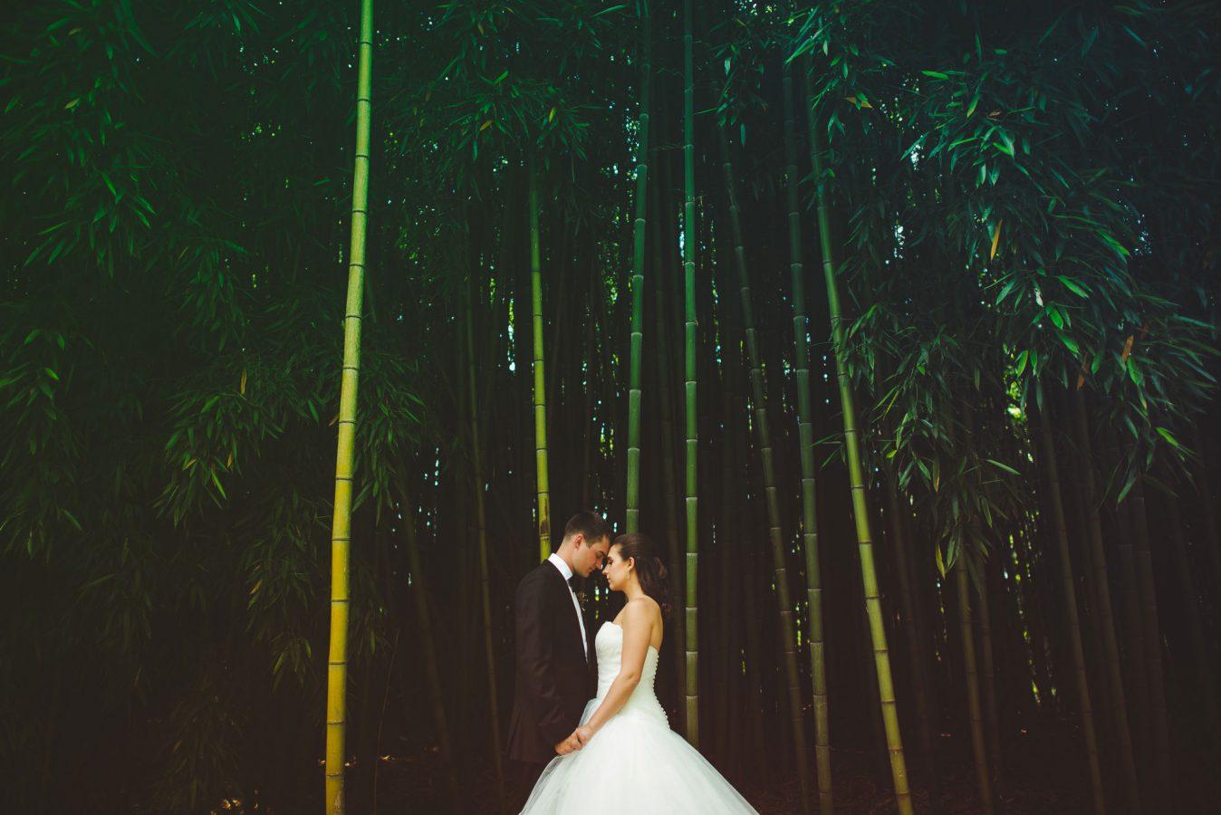 fete-photography-weddings-2017-013