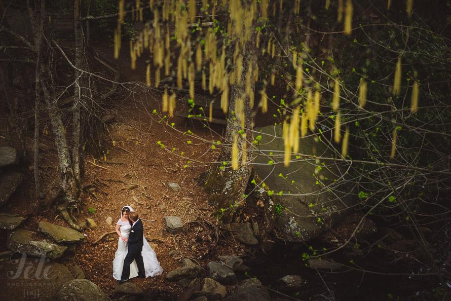 31-asheville-wedding