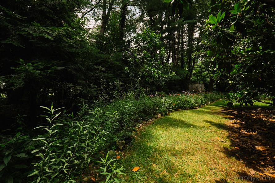 03-garden-area