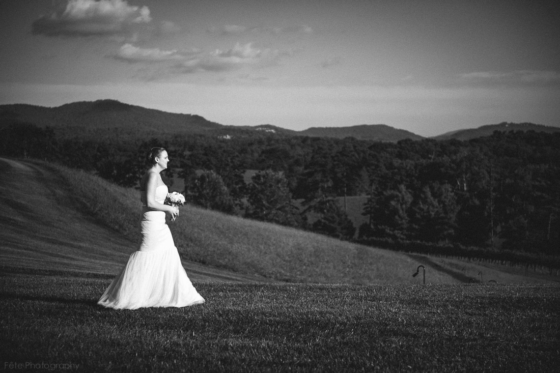 12-inn-on-biltmore-estate-wedding