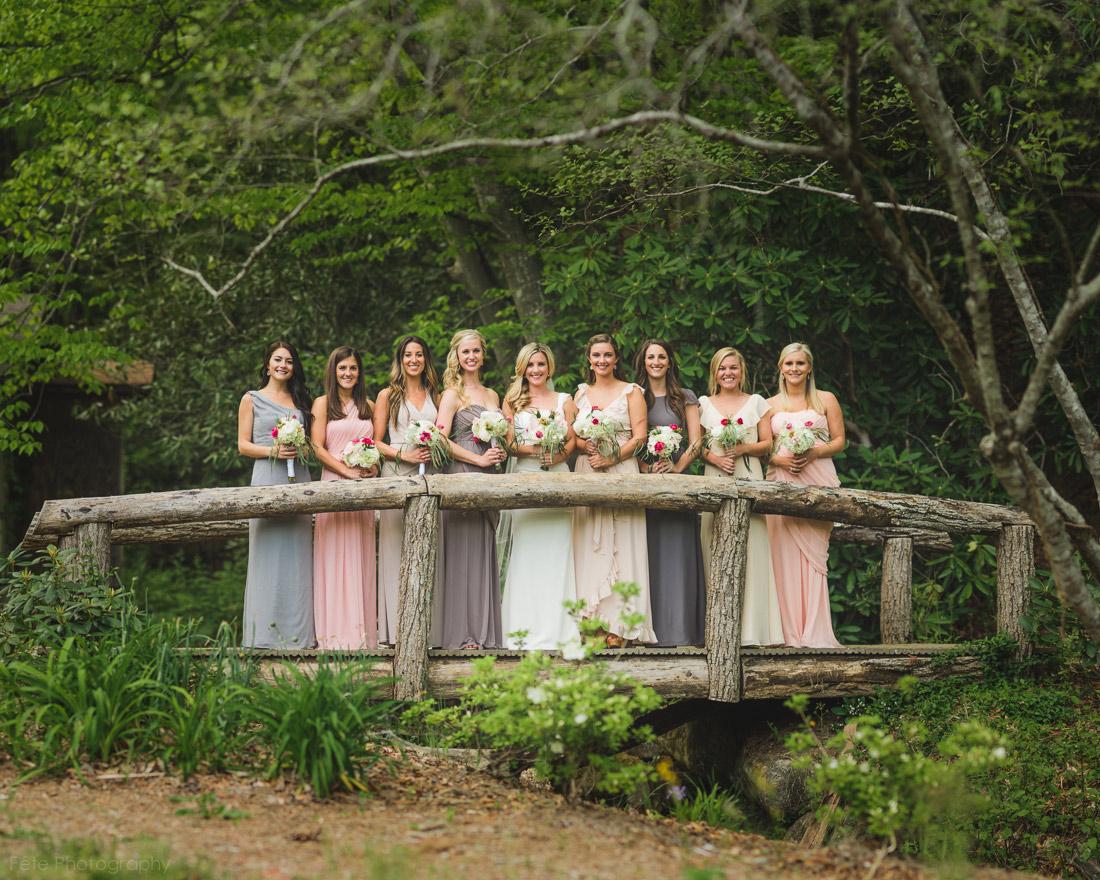 Bridal party in Brevard