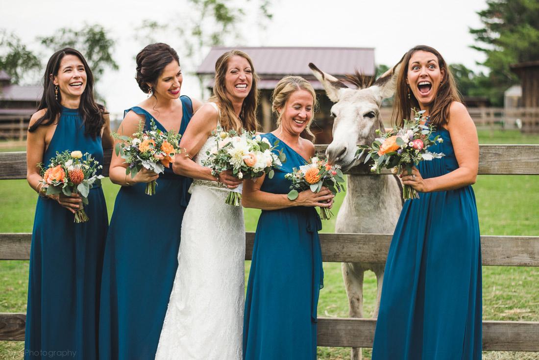 Wedding at The Farm