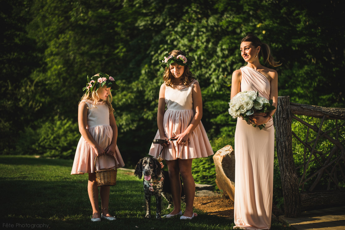 34-bridal-party-with-dog