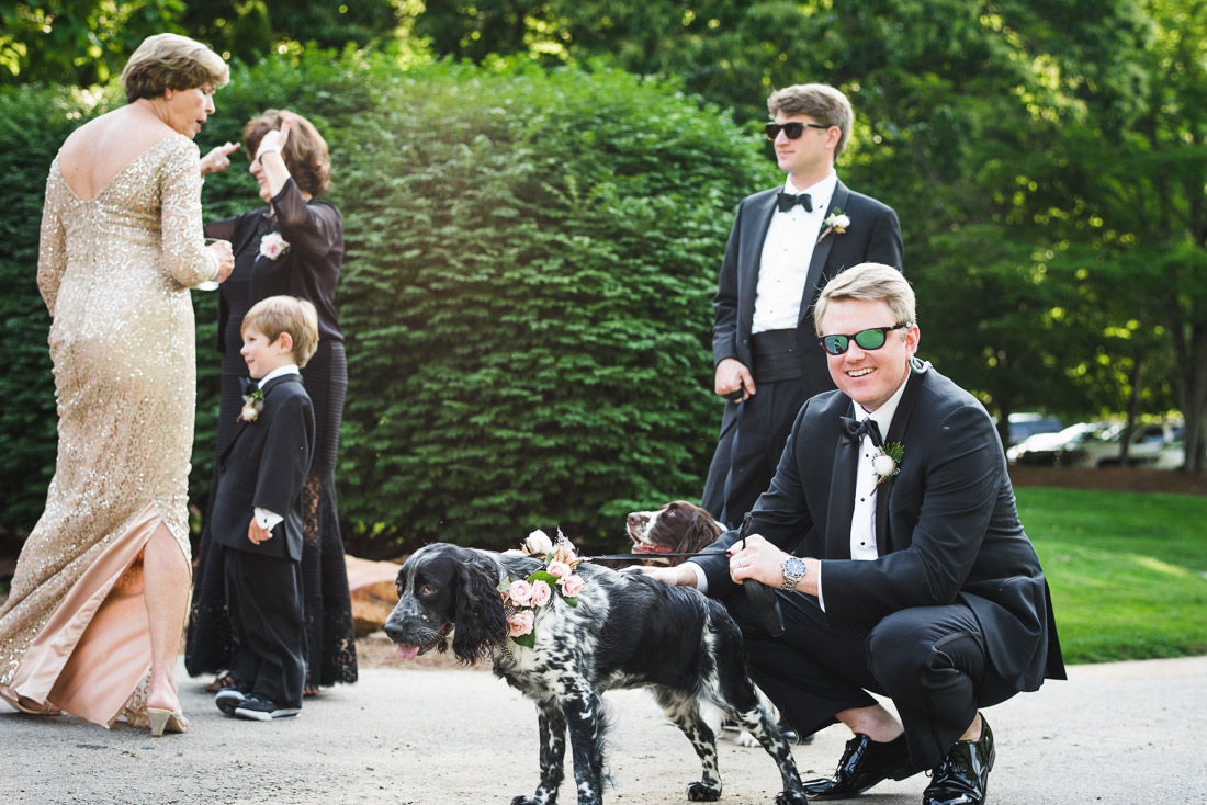 04-dogs-at-weddings
