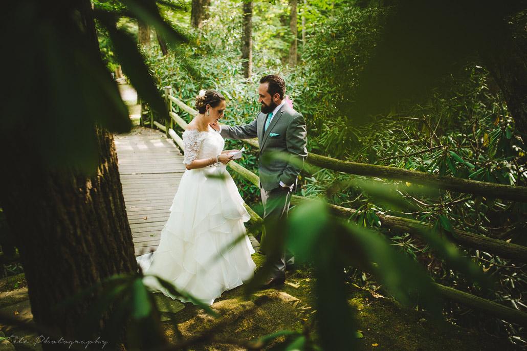 12-black-mountain-weddings