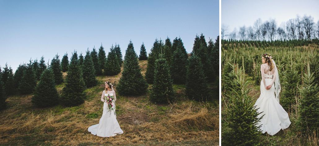 Christmas Tree Farm Asheville Nc.Bridal Sesssion Christmas Tree Farm Boyd Mountain