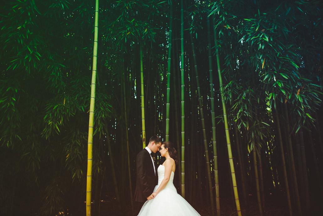 09-best-biltmore-estate-weddings