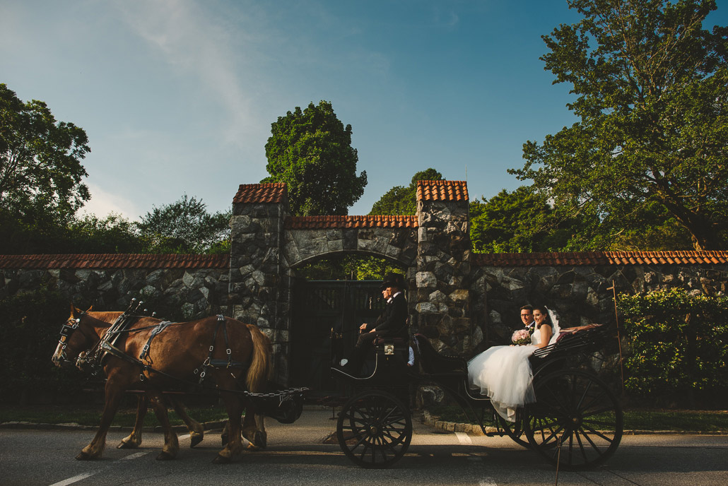 15-biltmore-estate-horse-carriage-wedding-entrance