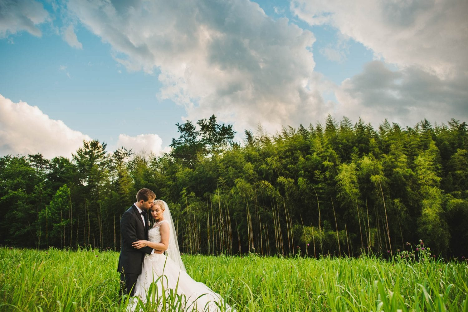 Wedding photography in a field with bamboo