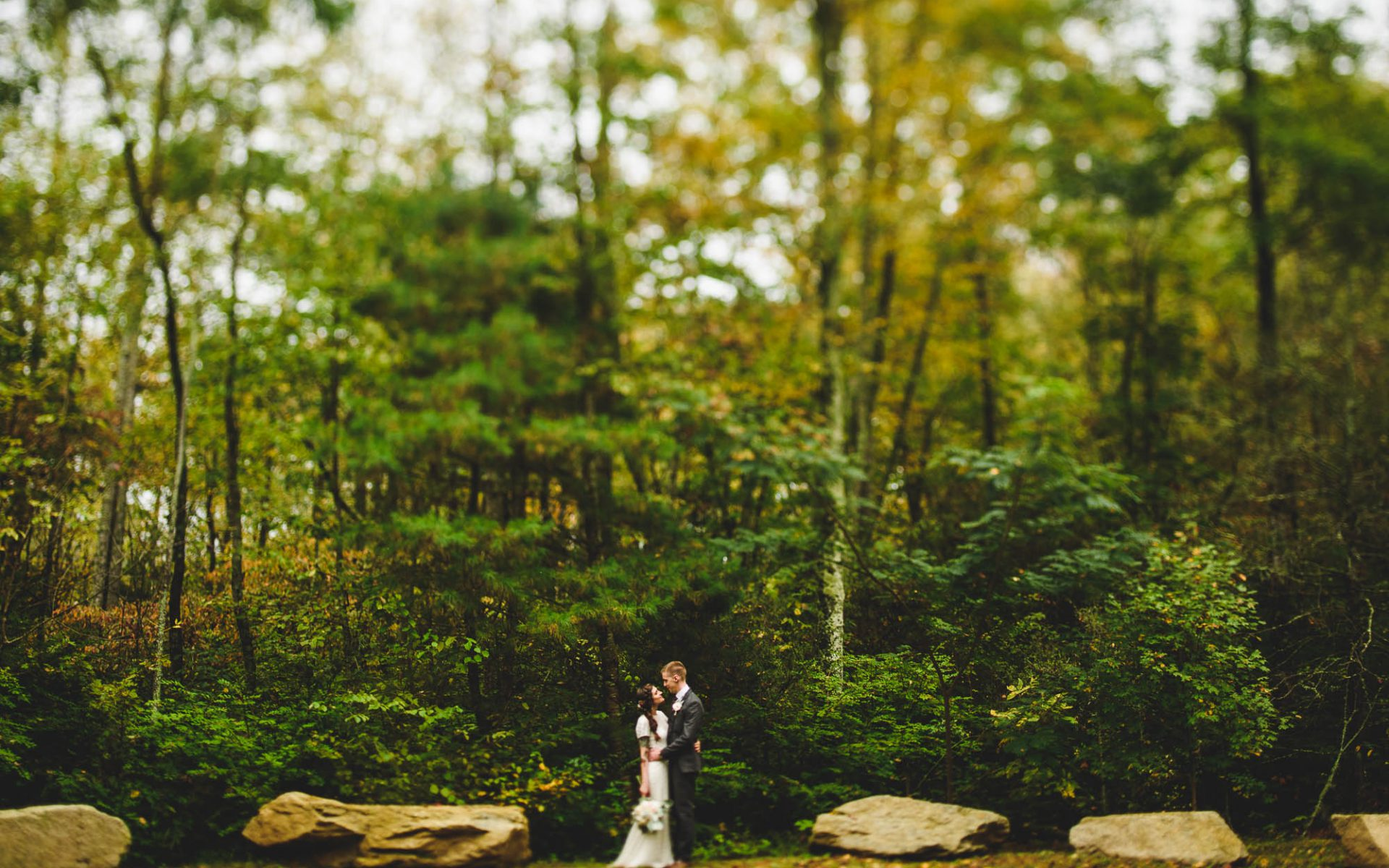 Laughing Waters Wedding | Hickory Nut Forest